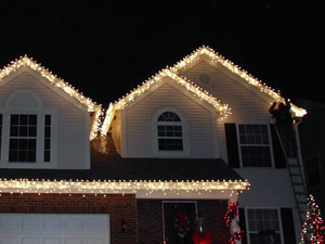 Premier Christmas Lights